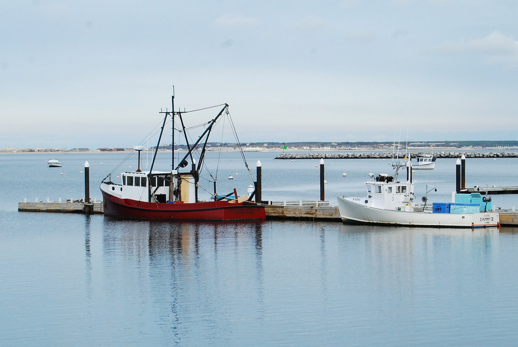Cape cod fishing charters chatham gables inn for Cape cod fishing