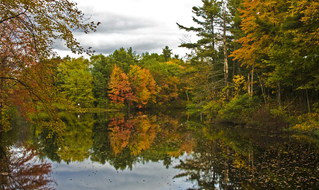 Cape Cod In The Fall The Definition Of Beauty Chatham