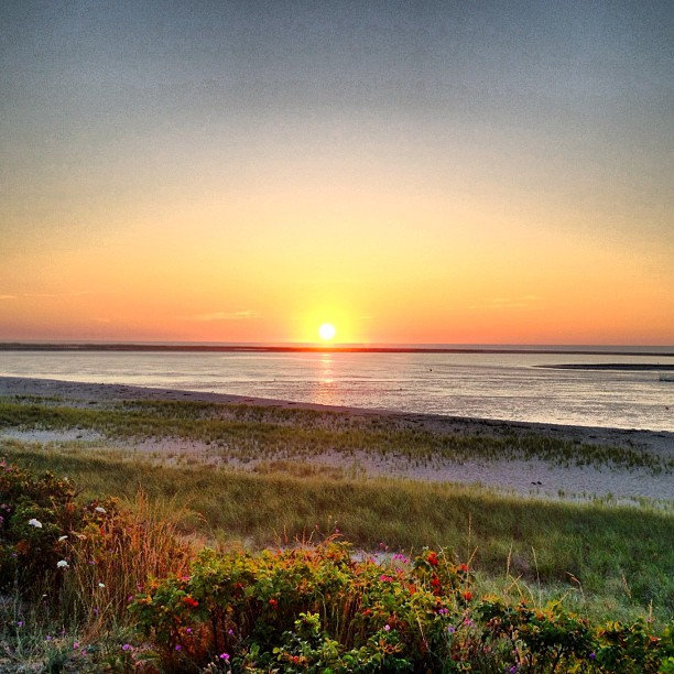 What Makes Chatham Beaches The Best Beach In Cape Cod