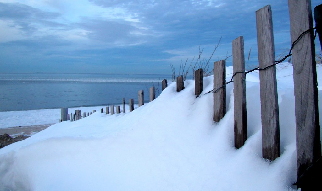 winter in Cape Cod