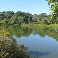 Have an adventure on the Cape Cod Rail Trail