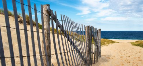 Walkway to One of the Best Beaches in Cape Cod