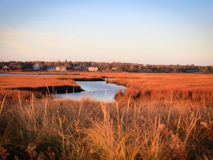 Beautiful View of Salt Marsh During Fall in Cape Cod
